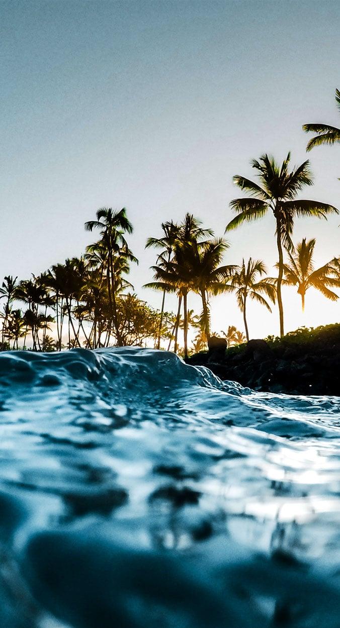 MauiM